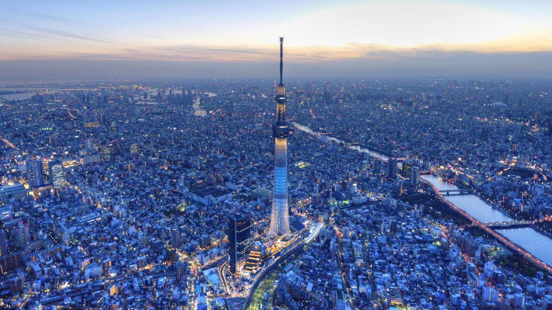 上空からの東京スカイツリー