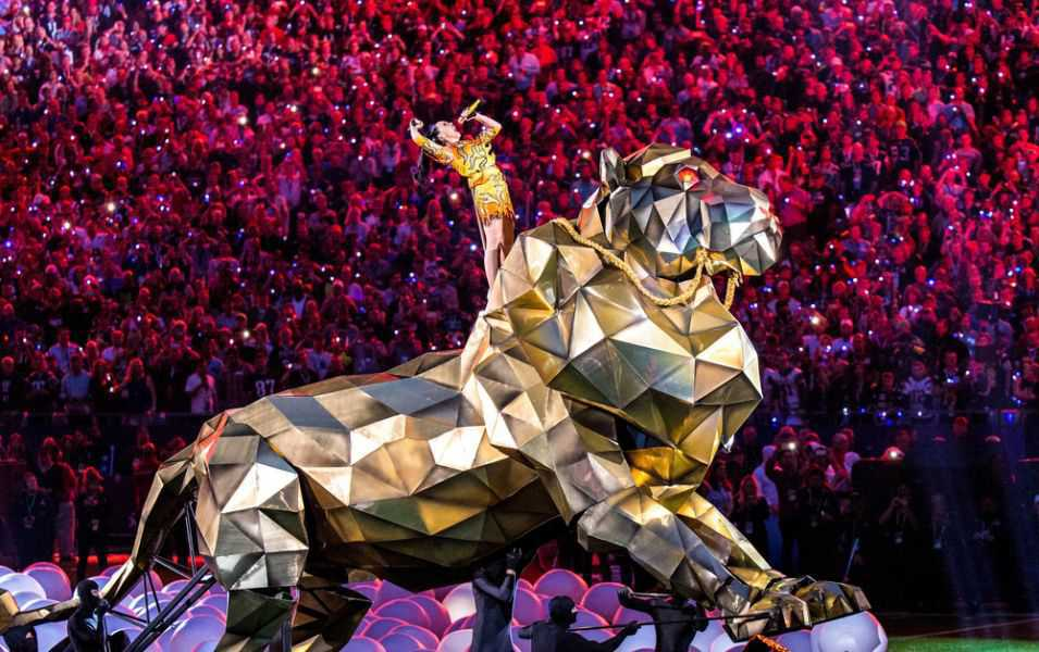 Roar(スーパーボウルショー)のメイン画像
