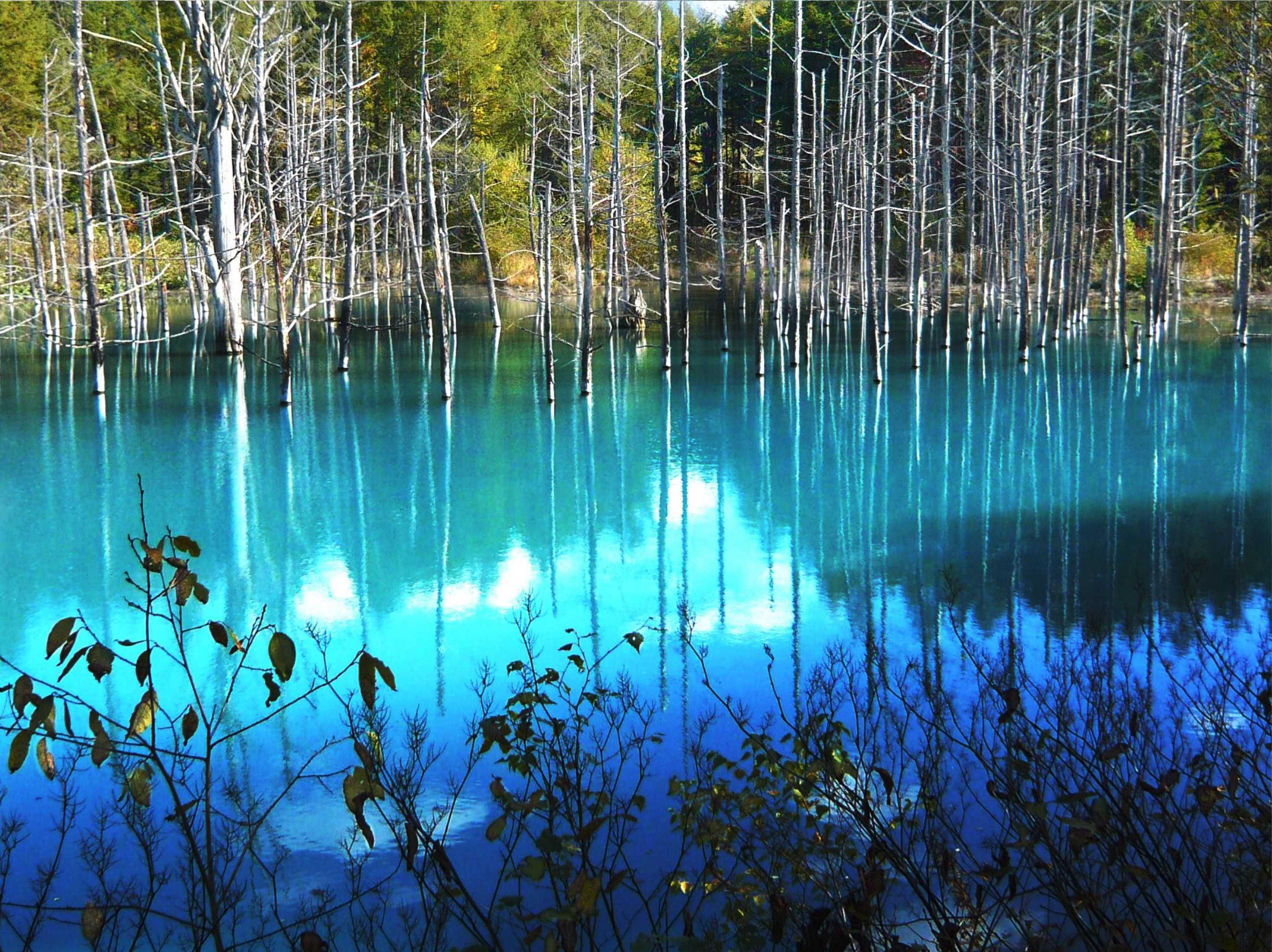 青い池のメイン画像